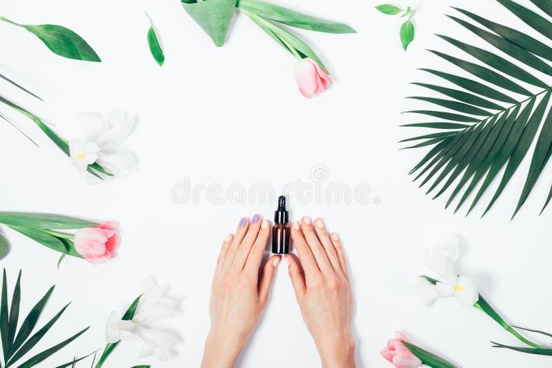 Draufsicht der Frau Kosmetikflasche mit Pipette halten lizenzfreie stockbilder