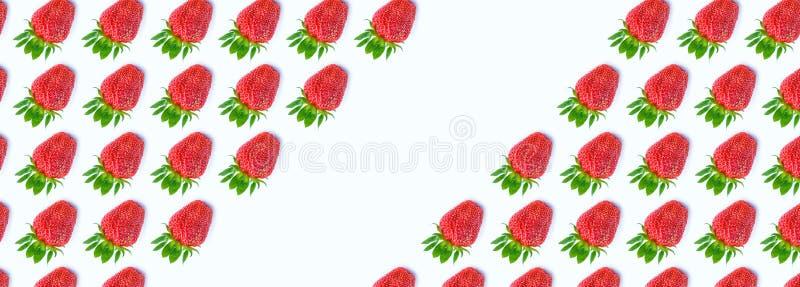 Draufsicht der frischen reifen Erdbeere auf weißem Hintergrund Modisches Muster der Beeren flache Lageart fahne stockbild