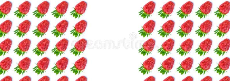 Draufsicht der frischen reifen Erdbeere auf weißem Hintergrund Modisches Muster der Beeren flache Lageart fahne stockfotografie