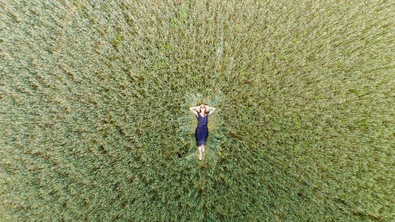 Draufsicht der jungen Frau in einem Kleid, das auf dem Weizenfeld sich entspannt stockfotografie