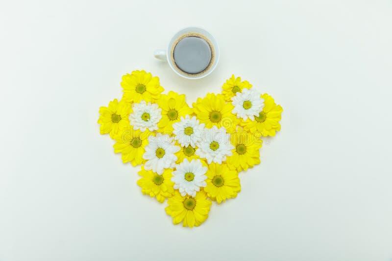 Draufsicht der schönen weißen und gelben Chrysantheme blüht in der Herzform und -Tasse Kaffee stockfotos