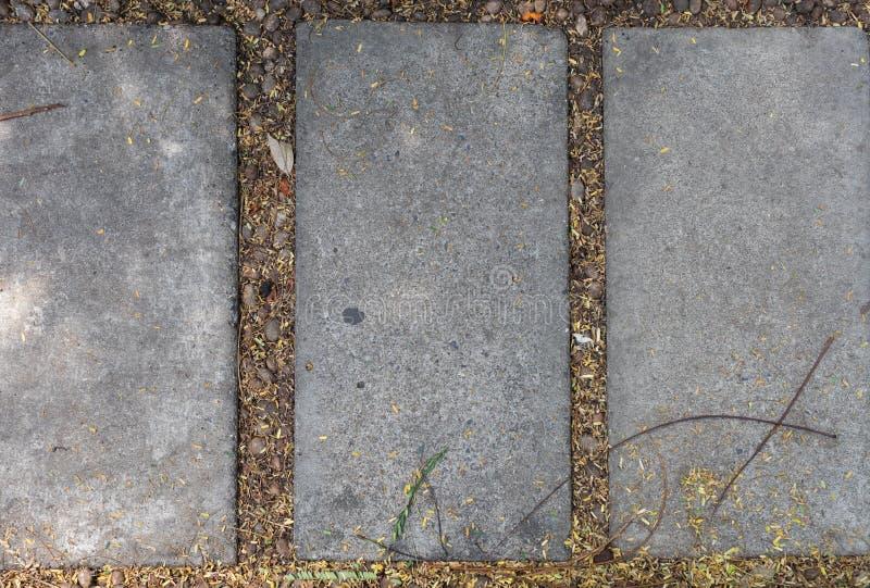 Draufsicht des Gehwegrechteckstein-Zementblattes im Garten stockbild