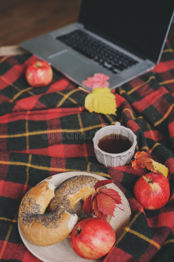 Draufsicht des gemütlichen Herbstmorgens zu Hause Frühstücken Sie mit Laptop, Tasse Tee und Bagel mit Äpfeln auf woolen Plaiddeck lizenzfreie stockfotos