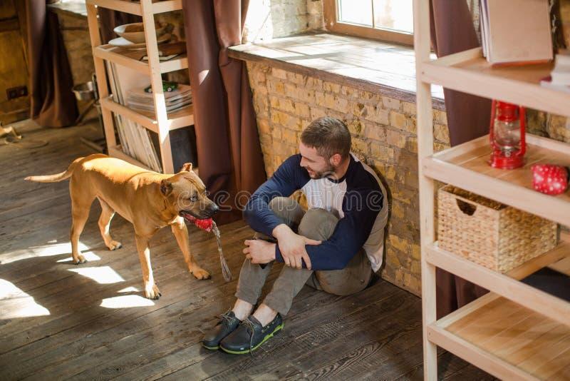 Draufsicht des Mannes sitzend auf Boden, sein Hund, der Spielzeug in den Zähnen hält stockfotos