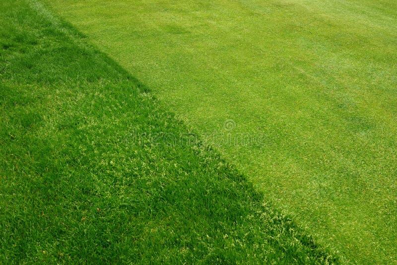 Draufsicht des perfekten Golfplatzes stockfotografie