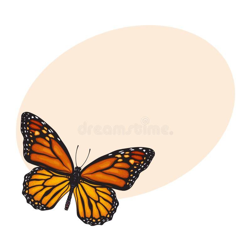 Draufsicht des schönen Monarchfalters, lokalisierte Skizzenartillustration lizenzfreie abbildung