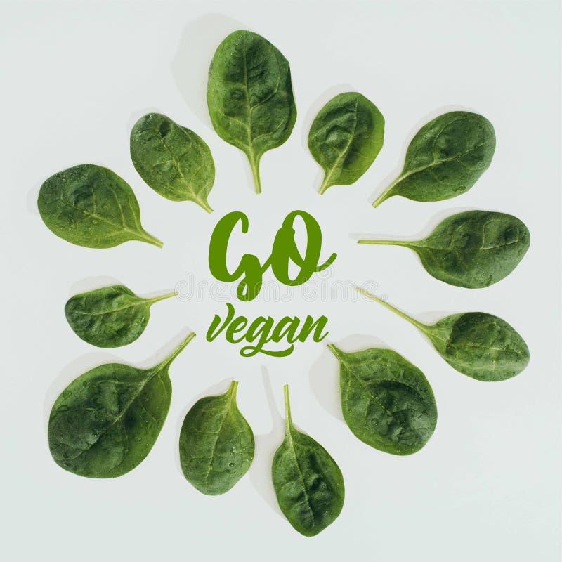 Draufsicht des schönen neuen Grüns verlässt und Wörter gehen strenger Vegetarier lizenzfreie abbildung
