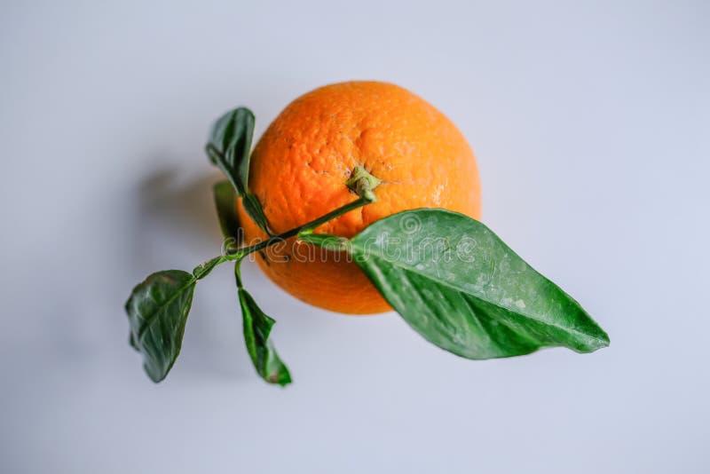 Draufsicht einer einzelnen reifen Orange mit grünen Blättern lizenzfreies stockfoto