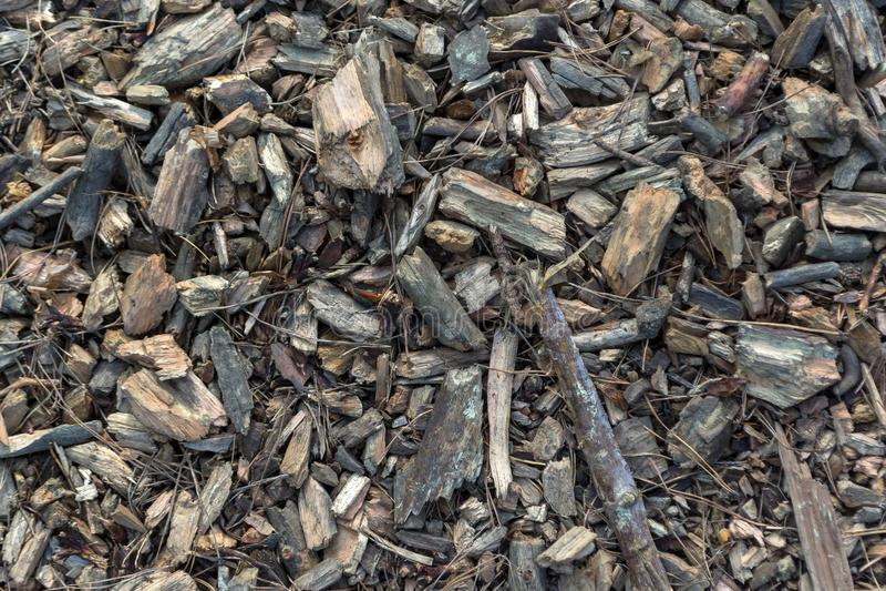 Draufsicht einer Mischung der Holzspäne stockfotos