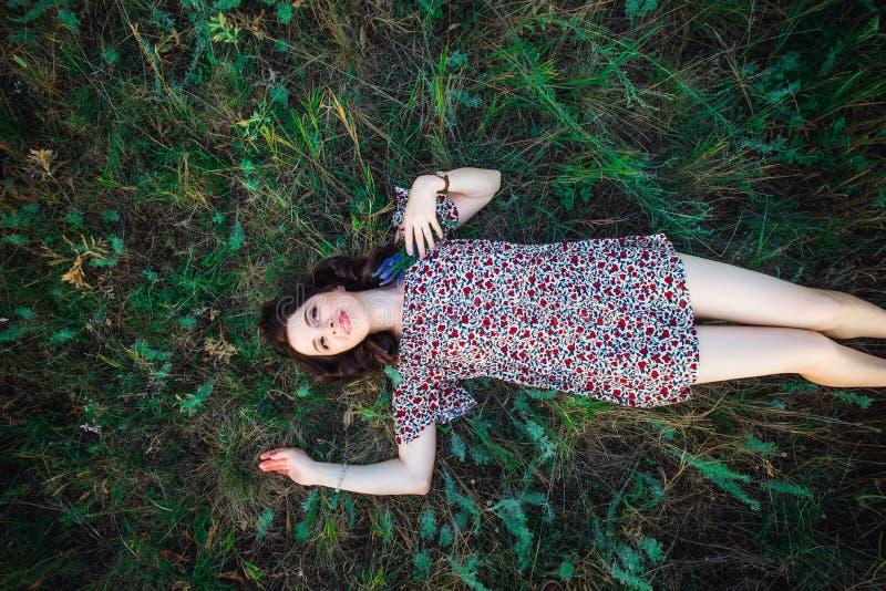 Draufsicht Porträt einer schönen jungen Frau oder des Mädchens, die auf dem grünen Wiesenfeld aufpasst zum Himmel und genießt Nat lizenzfreie stockfotos