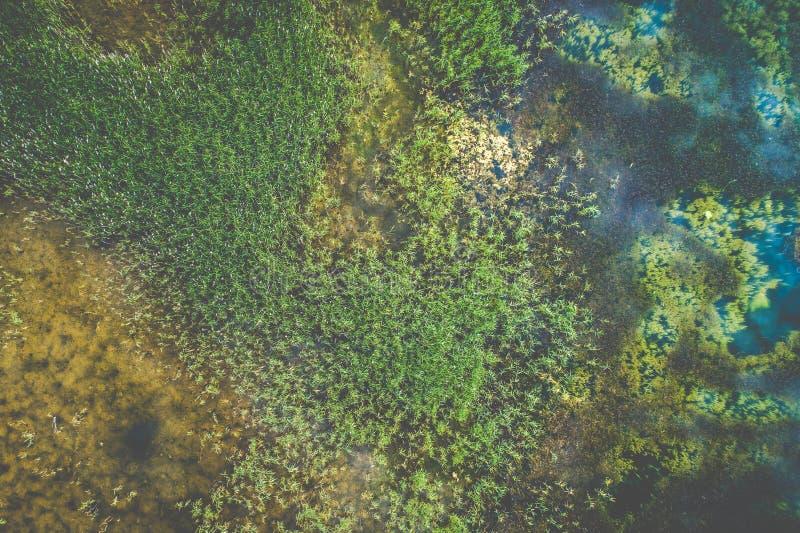 Draufsicht von Luftsee stockbilder