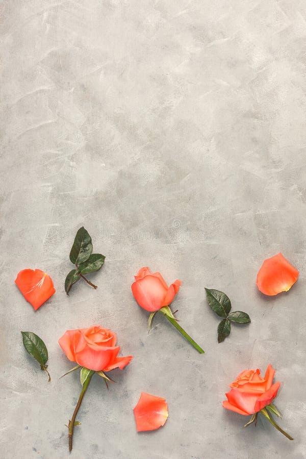 Draufsichtebene legen rosa Rosen auf grauen Hintergrund Romantische Dekoration lizenzfreie stockfotografie