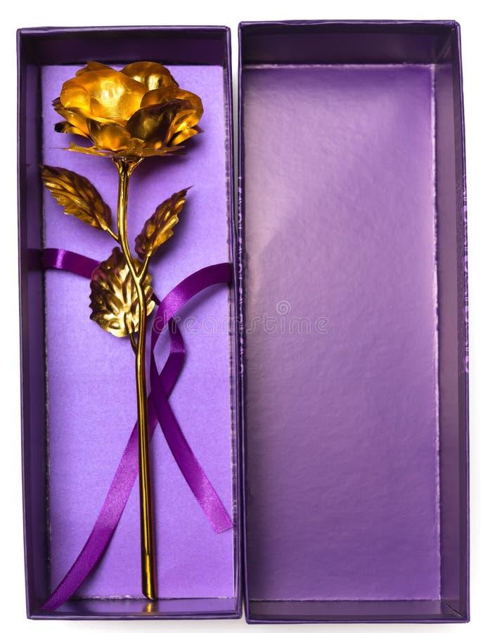 Draufsichtgold stieg in purpurroten prensent Kasten stockbilder