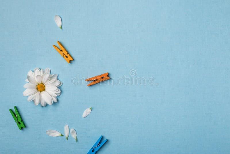Draufsichtzusammensetzung des Frühlinges stockbild