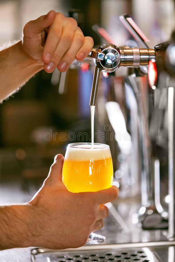 Draught Beer. Closeup Pouring Fresh Beer In Glass royalty free stock photo