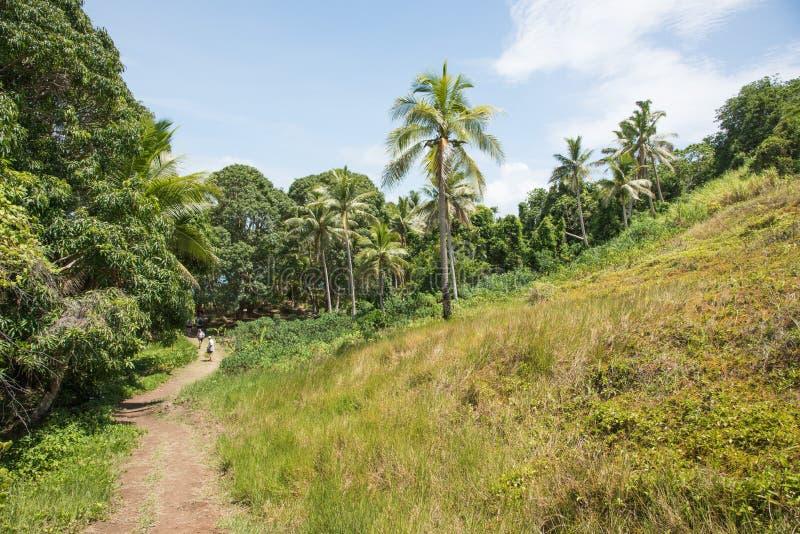 Dravuni wyspy Chodząca ścieżka obrazy stock