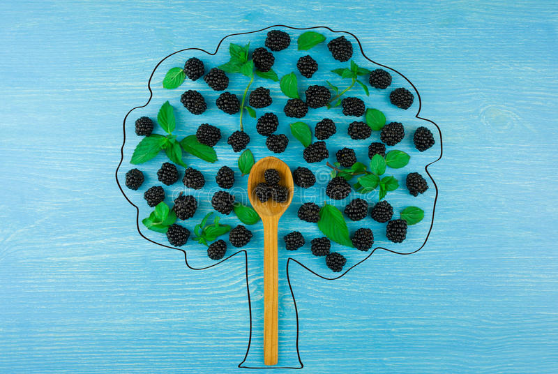 Draw a tree of blackberries on a blue wooden background.  royalty free stock photos