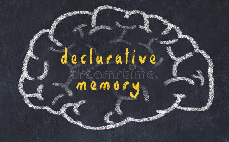 Drawind ludzki mózg na chalkboard z wpisową deklaracyjną pamięcią ilustracja wektor