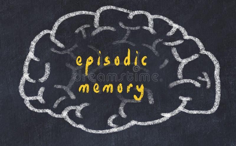 Drawind ludzki mózg na chalkboard z wpisową episodic pamięcią royalty ilustracja