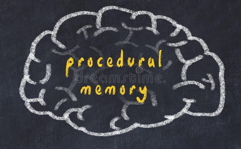 Drawind ludzki mózg na chalkboard z wpisową proceduralną pamięcią royalty ilustracja