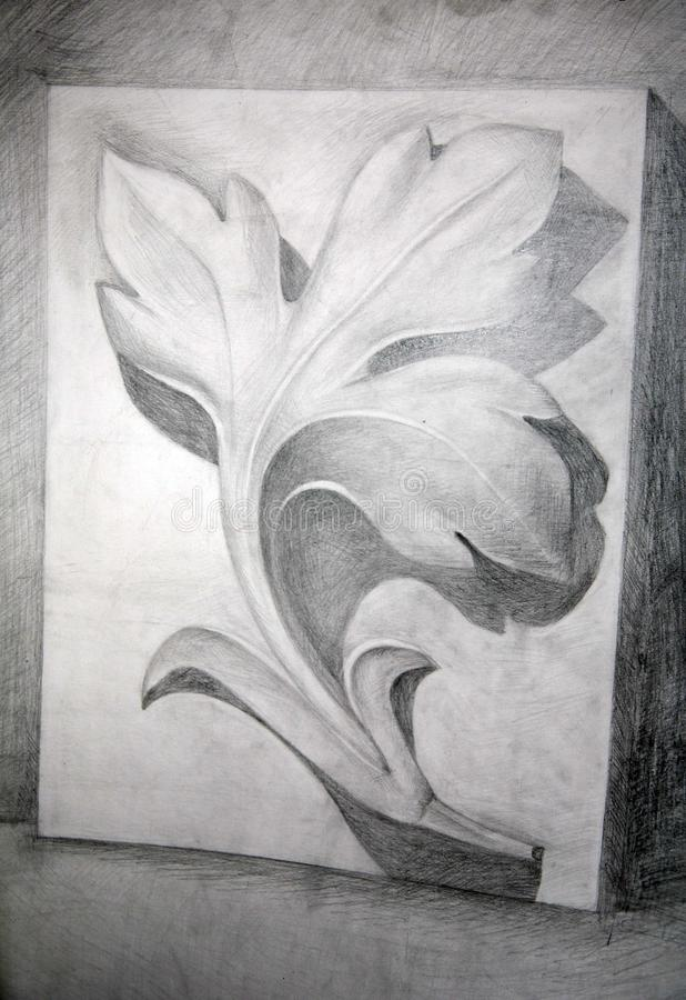 Download Drawing academic stock illustration. Image of organ, classroom - 16888936