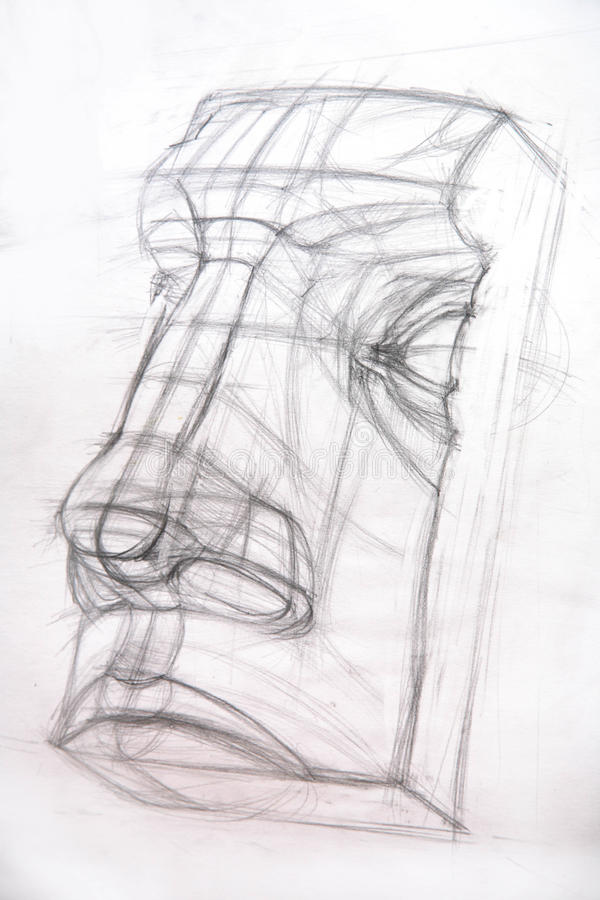 Download Drawing academic / Nose stock illustration. Image of biology - 18704580