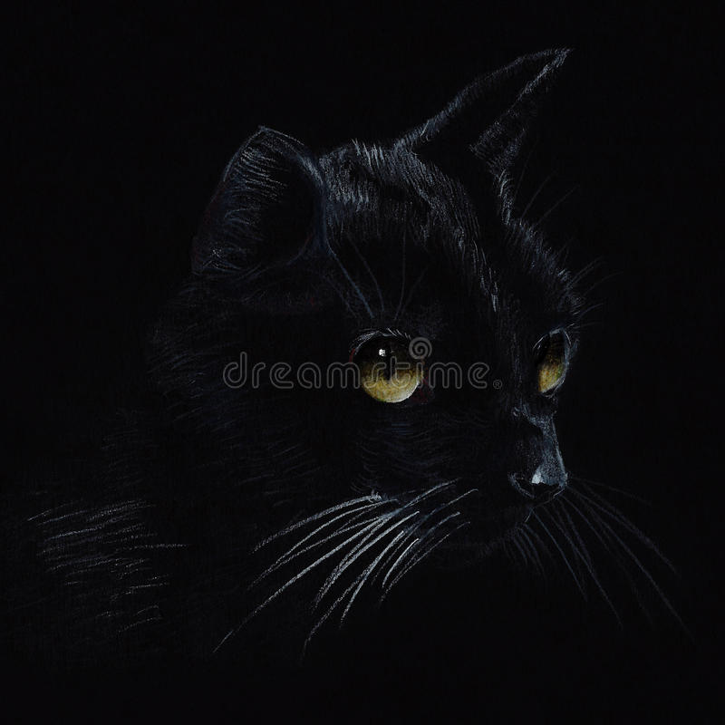 Drawing Of Black Cat With Vivid Eyes Stock Photo Image Of