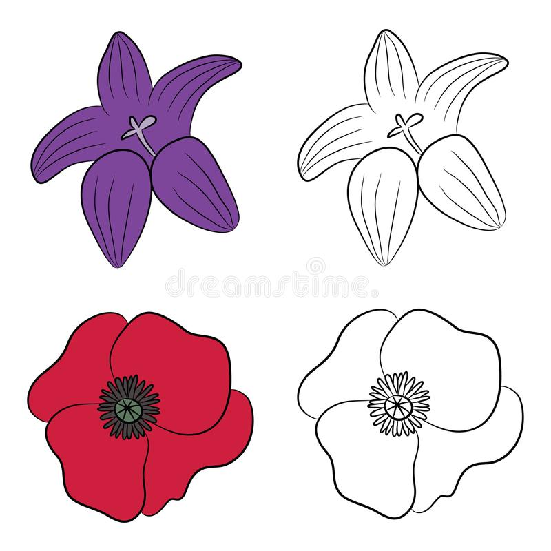 Vector Illustration of Flat Drawings of Bluebell and Poppy. Vector Drawing of Bluebell. Drawing of Poppy. Flat wildflowers stock illustration