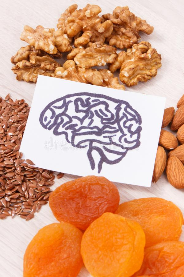 Drawing of brain and best nutritious food for health and good memory, healthy eating concept. Drawing of brain and best nutritious food for health and good stock images