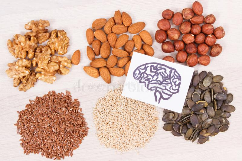 Drawing of brain and best nutritious food for health and good memory, healthy eating concept royalty free stock photography