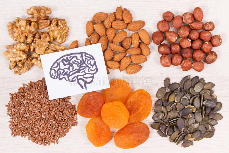 Drawing of brain and best nutritious food for health and good memory, healthy eating concept stock photo