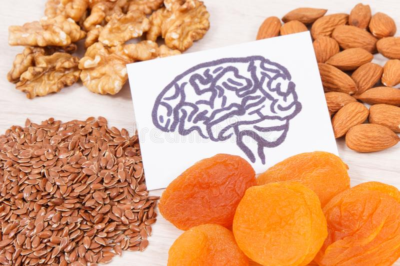 Drawing of brain and healthy food for power and good memory, nutritious eating containing vitamins and minerals stock photo