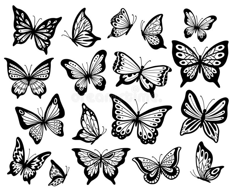 Drawing butterflies. Stencil butterfly, moth wings and flying insects isolated vector illustration set. Drawing butterflies. Stencil butterfly, moth wings and stock illustration