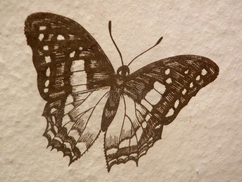 Drawing of a butterfly royalty free stock photography