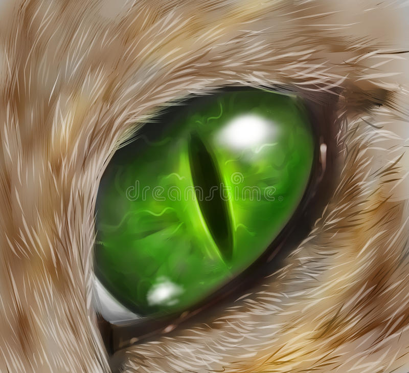 Drawing of a cat eye royalty free illustration