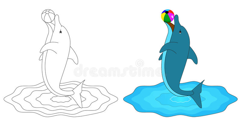 d for dolphin stock illustration