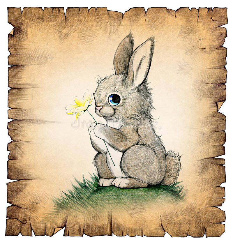 A Drawing Of A Cute Rabbit Stock Illustration Image Of