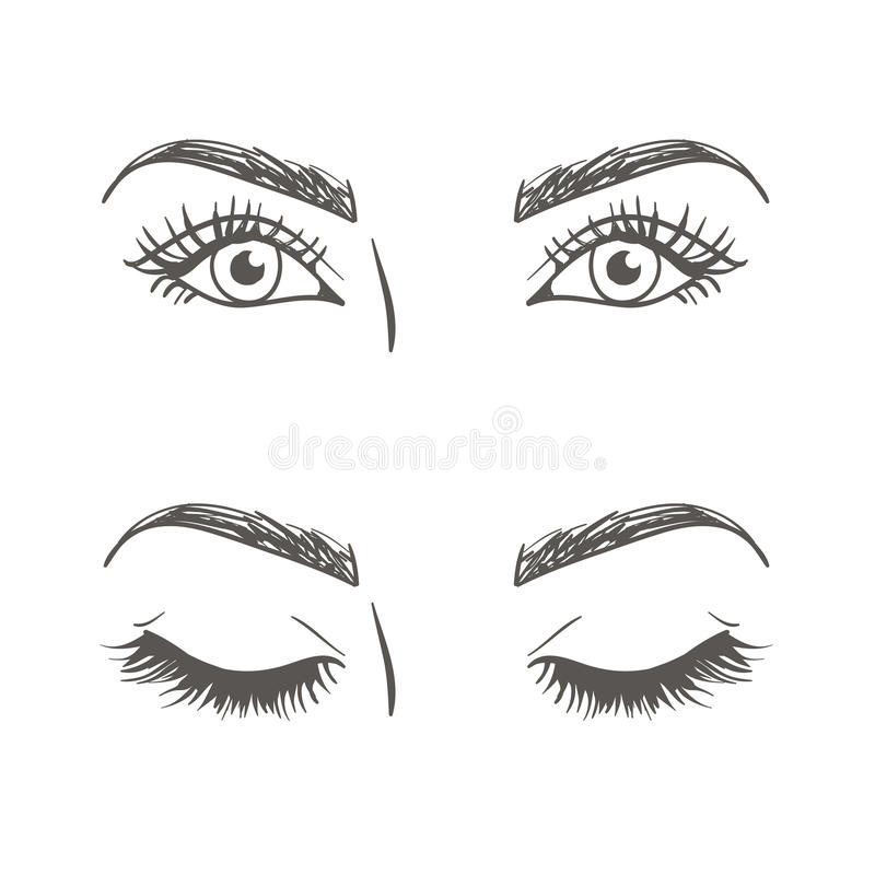 Download drawing of the eye stock vector illustration of beautiful 75757812