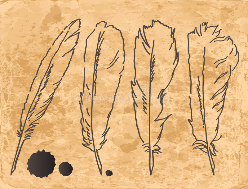 Drawing feathers set stock illustration