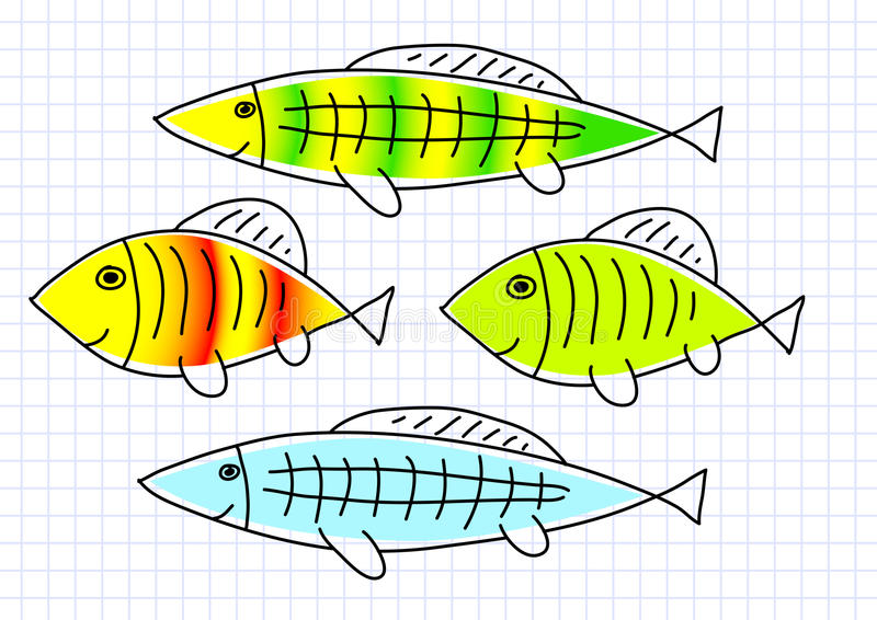 Drawing of fish vector illustration