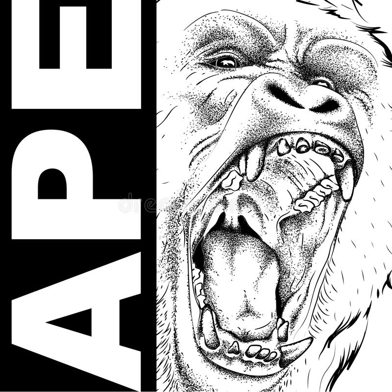 Free Drawing Of A Ape`s Head. Leader Of A Pack Of Gorillas. Aggressive Monkey. Graphic Design Of The Cover. Template For Design. Vector Royalty Free Stock Photo - 112033275