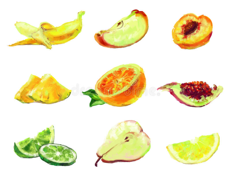 Drawing slices of fruit vector illustration