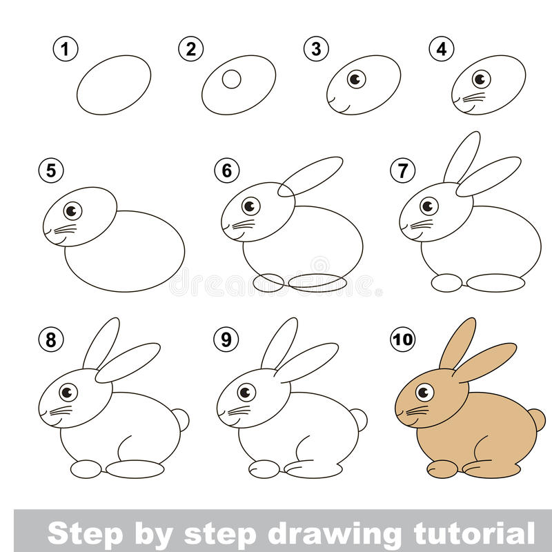 Drawing tutorial. Hare. vector illustration