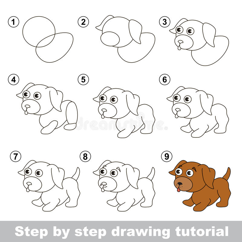 Drawing tutorial. How to draw a Little puppy royalty free illustration