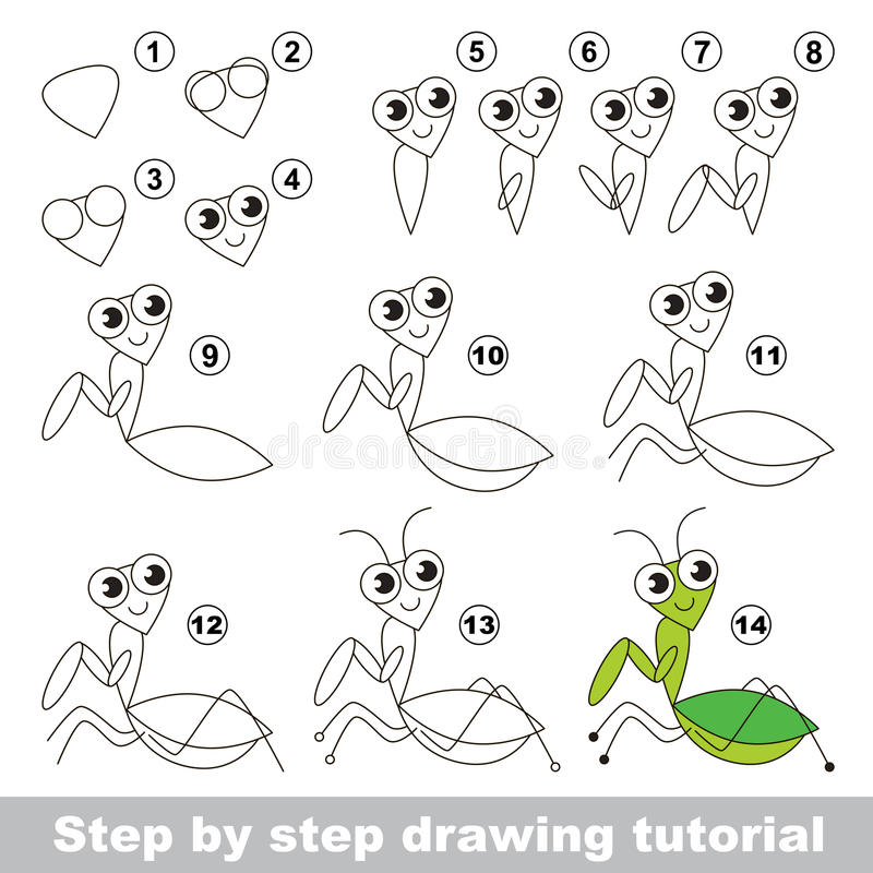 Drawing tutorial. The Mantis. vector illustration