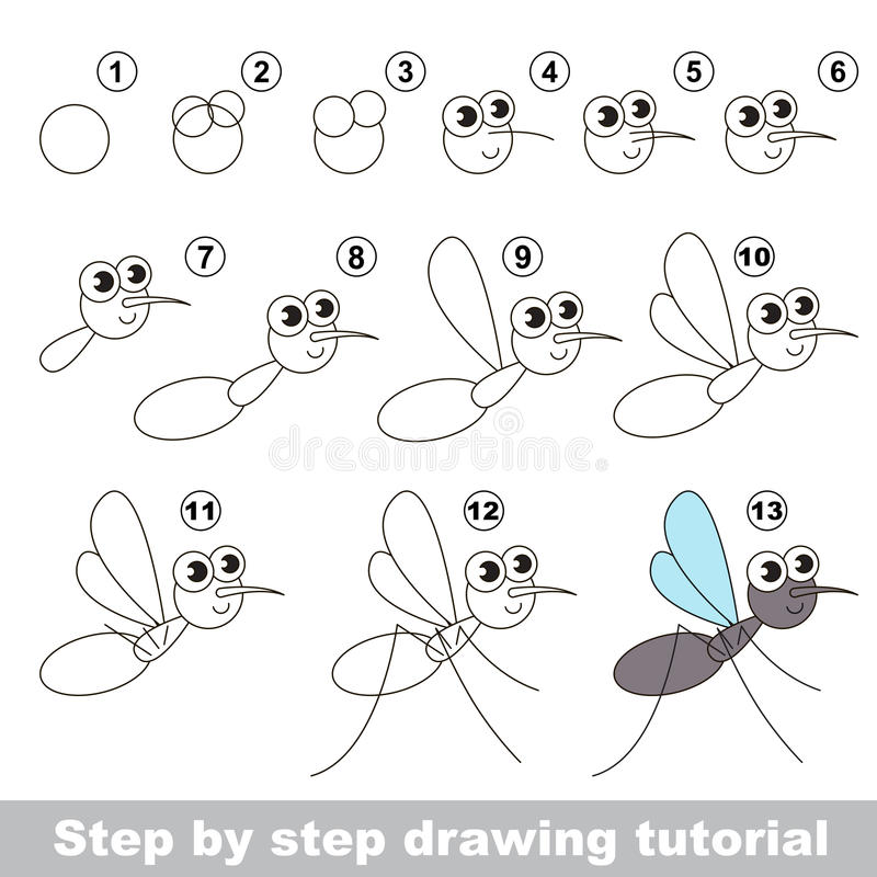 Drawing tutorial. The mosquito. vector illustration