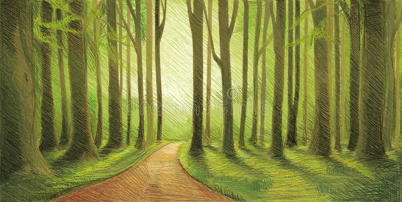 Drawn Forest royalty free illustration