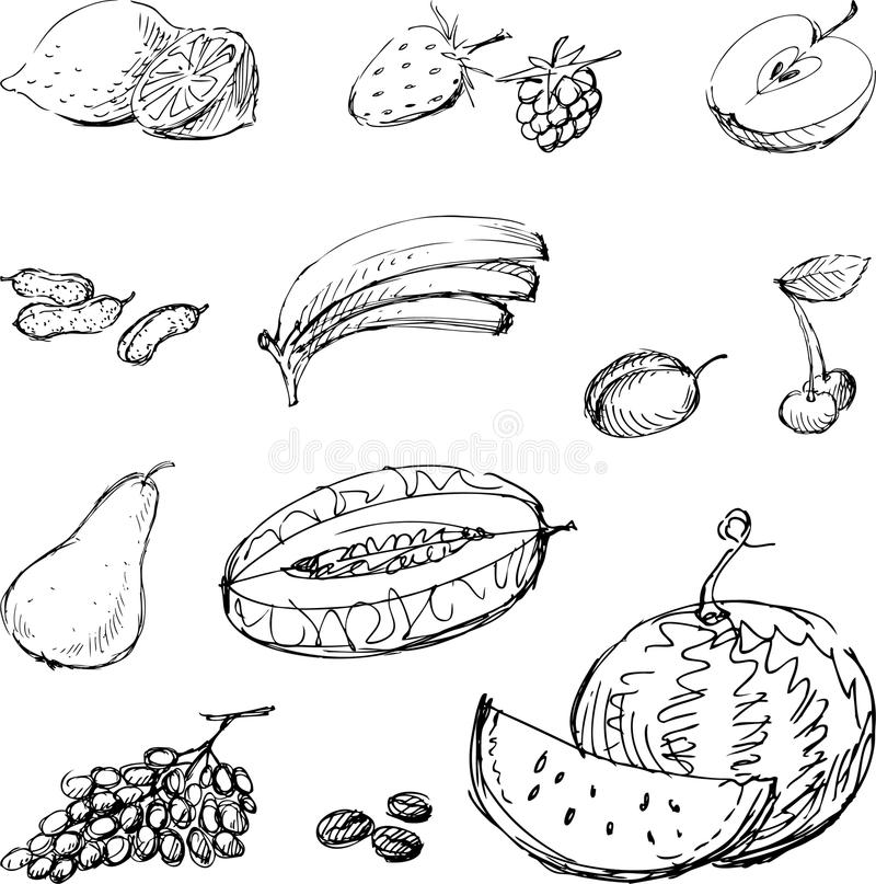 Drawn fruit royalty free illustration