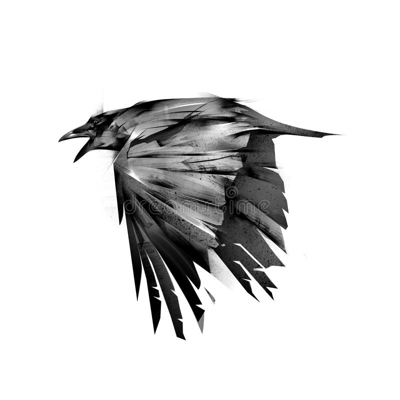 Drawn isolated fly black crows stock photography