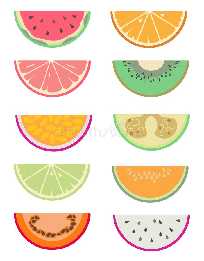 Drawn vector collection set with different exotic fruit slices cut in half like water melon, orange, grapefruit, kiwi royalty free illustration